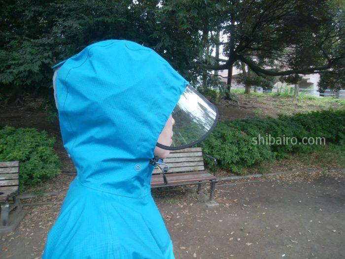 柴犬の雨の日散歩のレインクリアバイザー