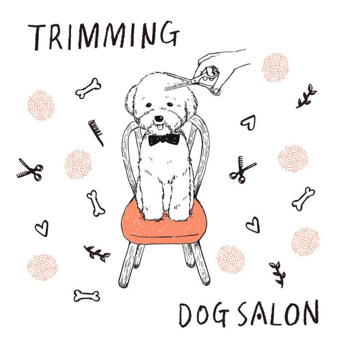 柴犬のトリミングサロン