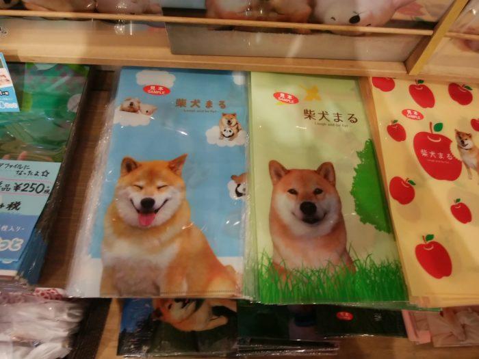 柴犬まるのファイルホルダー
