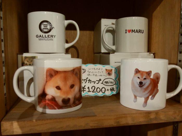 柴犬まるのマグカップ