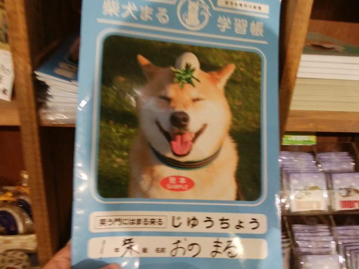 柴犬まるのノート