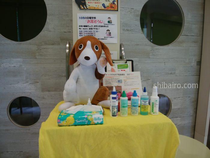 犬の耳の洗浄液はどれがいい?