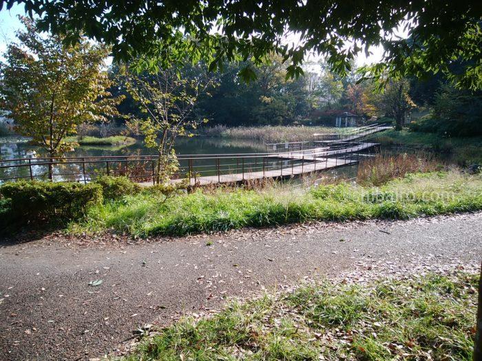 クアットロパンキーネ近くの公園