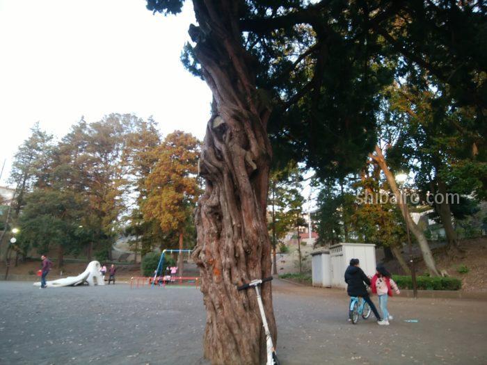 ロケット公園